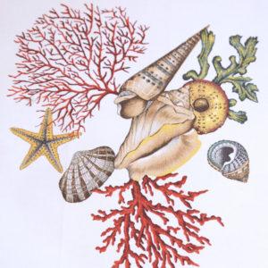 Tessuto Panama Conchiglia   Rubino   Patrizia Zani
