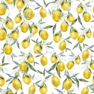 Tessuto Limon   Patrizia Zani
